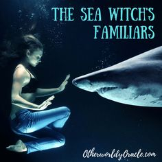 sea witch A Sea Witchs Familiars: Sea Gulls, Dolphins, Sharks, and More! Witch Wand, Witch Spell, Pagan Witch, Water Witch, Sea Witch, Sea Storm, Witchcraft Books, Witchcraft For Beginners, Traditional Witchcraft
