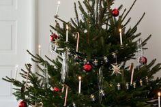 Christmas tree candles on a Swedish tree. Swedish Christmas, Woodland Christmas, Noel Christmas, Scandinavian Christmas, All Things Christmas, Winter Christmas, Vintage Christmas, Christmas Ideas, Christmas Tree Candle Holder