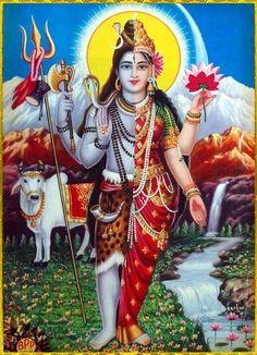 Ardhanarishvara Shiva Shakti, Shiva Parvati Images, Rudra Shiva, Krishna Hindu, Cute Krishna, Hindu Deities, Hinduism, Shiva Art, Krishna Images