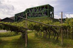 Vínna pivnica Cantina Tramin v Taliansku