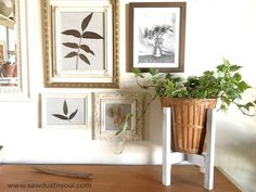 How to Make a DIY Plant Stand — Sawdust & Soul