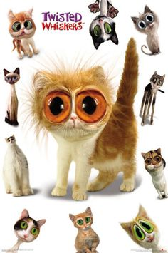 Twisted Whiskers Cats Poster