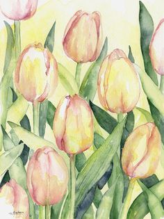 This watercolor Pink Tulips is an original watercolor painting. Title: Spring Tulips Size: 9 x 12 inches Comes in a protective sleeve with a certificate of authenticity. Painted with professional watercolors on 140 lb watercolor paper. Please note painting comes UNFRAMED and