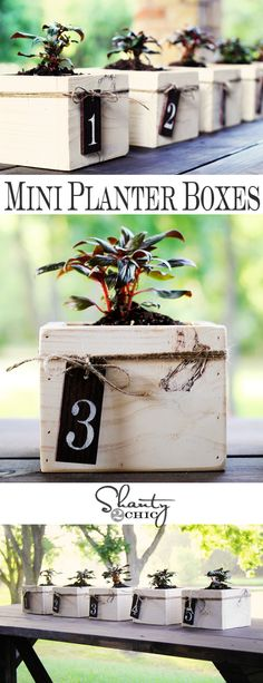 DIY Mini Planter Boxes for Centerpiece or Herb Garden!  These look great & are easy to make.  She does all kinds of NEAT things!!