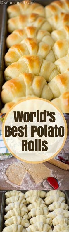 The World's Best Potato Rolls will ruin you. You'll never want to make frozen rolls again after having these buttery, delicious, pillowy soft dinner rolls. Bread Bun, Bread Rolls, Bread Recipes, Cooking Recipes, Cake Recipes, Dessert Recipes, Scones, Homemade Rolls, Homemade Breads