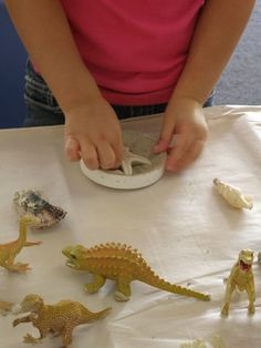 positioned fossils - press object into clay then fill with plaster.