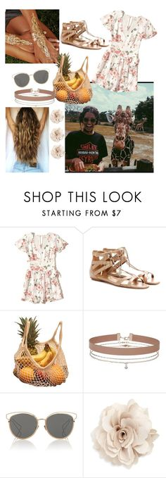 """""""Picnic with the Giraffes"""" by merylrs ❤ liked on Polyvore featuring Hollister Co., Aquazzura, Miss Selfridge, Christian Dior and Cara"""