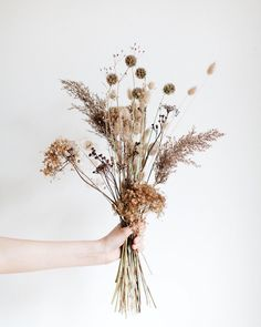 Wedding bouquet Weeds are flowers too ✨ and I joined forces again and created a botanicals&dried flowers stock photo series. Dried Flower Bouquet, Dried Flowers, How To Dry Flowers, Wedding Bouquets, Wedding Flowers, Boho Wedding, Wedding Bride, Dried Flower Arrangements, Design Floral