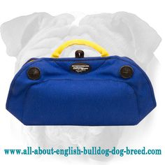 Reliable #French #Linen #Bite #Builder for #English #Bulldog $44.90 | www.all-about-english-bulldog-dog-breed.com