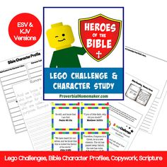 Several Bible Lego curriculums