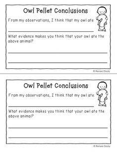 Owl pellet min-book freebie