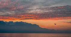 Montreux Sunset by Davide Espertini Ph.
