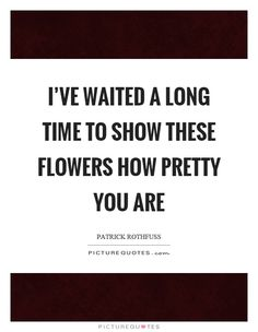 patrick rothfuss quotes - Google Search