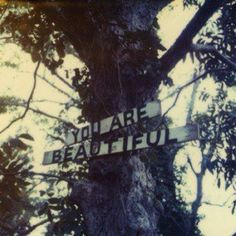 something like this for my nano cover? But with the title of the book, although this is a lovely phrase. This photo is by Mike Brodie, aka The Polaroid Kidd Just In Case, Just For You, Love You, My Love, The Words, Christopher Mccandless, You Are Beautiful, Beautiful Things, Beautiful Mess