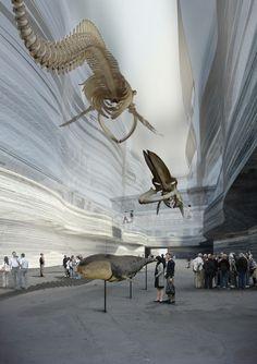 Lundgaard & Tranberg // Danish Museum of Natural History, Whale corridor