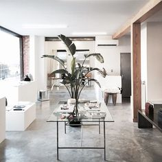 15 Stores We'd Maybe Definitely Kill To Live In #refinery29  http://www.refinery29.com/interior-design-retail-spaces-instagram#slide-4  Sincerely, TommyThis Bed-Stuy boutique, with its concrete floors and whitewashed walls, would make the ideal headquarters for an art world impresario.