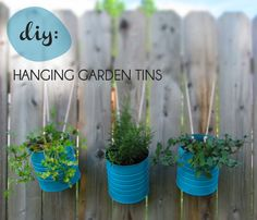 DIY HANGING GARDEN TINS :: Using upcycled tin cans or coffee cans! SO easy! | #pottedplantsociety #diyplanter #hangingplanter