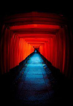 伏見稲荷大社 Torii gate of Fushimi Inari shrine, Kyoto, Japan Kyoto, Photo Japon, Beautiful World, Beautiful Places, Japanese Shrine, Art Occidental, Japon Tokyo, Fushimi Inari Taisha, Torii Gate