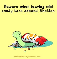 Sheldon the Tiny Dinosaur who Thinks he's a Turtle, , He is naturally drawn to mini things Storenvy,. Cute Comics, Funny Comics, Turtle Dinosaur, Dinosaur Pics, Sheldon The Tiny Dinosaur, Tiny Turtle, Cute Turtles, Dibujos Cute, Cute Characters