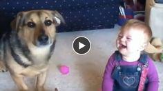 En compagnie de son chien, une petite fille est prise d'un fou rire