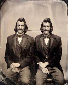 "Pgeist854 - ""Moustache Siameses"""