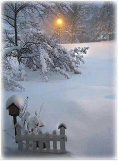 Taken after a snow storm in Maryland, winter wonderland Winter Szenen, I Love Winter, Winter Magic, Winter Christmas, Winter White, Winter Sunset, Winter Trees, Winter Wonderland, Christmas Wonderland