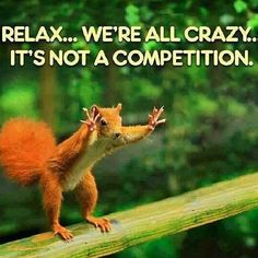 we are all crazy funny quotes quote lol funny quote funny quotes humor. It IS a competition! Wtf Funny, Funny Cute, Funny Memes, Hilarious, Crazy Funny, Crazy Meme, Crazy Humor, Funny Work, Seriously Funny