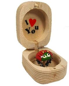 Lady Bug Box