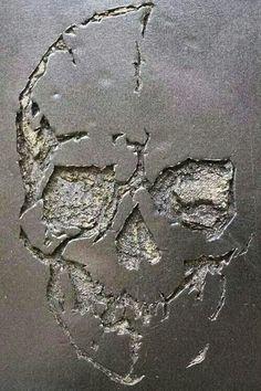 Pared skull