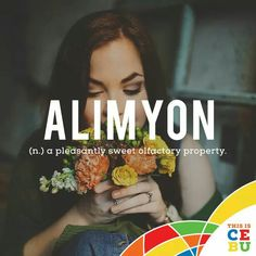 #bisaya #beautifulwords Unique Words, Great Words, Beautiful Words, Filipino Words, Special Words, Word Play, Word Of The Day, Vocabulary, Cebu