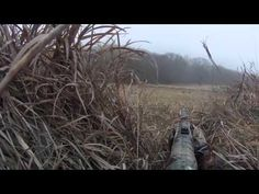 canada hunting license