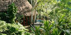 This is not just another luxury jungle lodge, but one that has earned recognition for being the perfect eco-resort. Perfectly located at the foothills of the mountains and near the Macal River, The Lodge began as a small family farm, thirty years ago, and because of its location, runs programs on natural history...