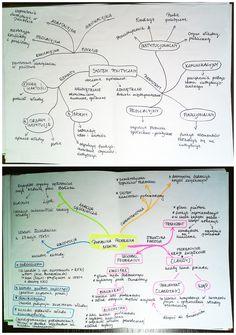 Hattu - Notowanie za pomocą map myśli