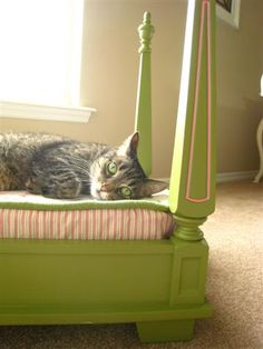 <p>Meet Oliver! Oliver is a beloved member of my sister's family. Today he is a happy cat! With the help of Gail, my brother-in-law, and my sister, Karla, Oliver has a new bed.I acquired this old table almost a year…</p>