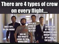 Flight Attendant Life Explained With Memes Aviation Quotes, Aviation Humor, Flight Attendant Quotes, Airline Humor, Pilot Humor, Trolley Dolly, Transformation Quotes, Funny Quotes, Funny Memes