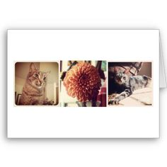 """""""Create Your Own"""" 6 Photo Instagram Card (White) from Zazzle. $3.95  Replace Instagram photos with your own in one easy step.    #instagram #instagramproducts #instagramcards #DIY #cards #uniquegifts #instagramgifts #blankcards #personalizedgreetingcards #personalizedcards #photocards"""