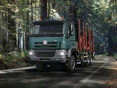 Log and lumbertruck