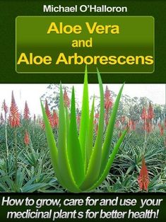 Medicinal Plants, Homeopathy, Aloe Vera, Health And Wellness, Medicine, Organic, Garden, Amazon, Books
