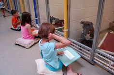 The humane society of Missouri had spearheaded a groundbreaking program where kids reading to dogs is the main thing. they bring kids and shelter dogs