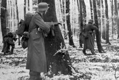 """German grenadiers equipped with the StG 44 (Sturmgewehr 1944 - """"assault rifle 1944″), considered the first modern assault rifle, use trees as cover. Ardennes Forest, Luxembourg. 22nd of December 1944."""