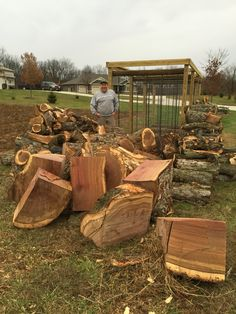 Looking at the best burning oak and huge quartered logs