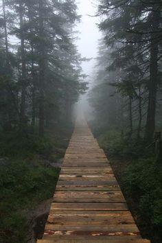 Karkonosze National Park #Karkonosze #Mountains #Poland