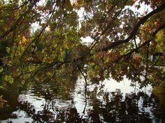 Bois de Vincennes- 12th arrondisment