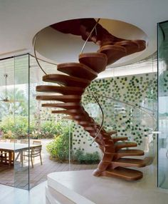 Wooden spiral staircase shaped into form of spine