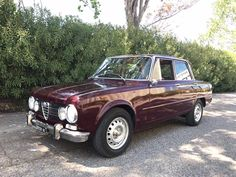 Alfa Romeo-Giulia Super 1.3 red | Joop Stolze Classic Cars