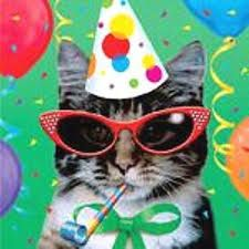 i've used this party cat on birthday cards and also as the photo in whatsapp party 'invitations' - he's just too much fun!