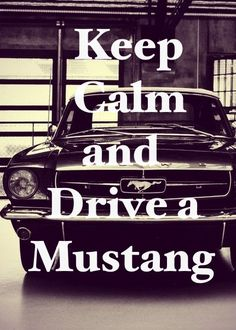 Fast cars quotes ford mustangs new ideas My Dream Car, Dream Cars, Ford Mustang 1964, Ford Mustangs, Mustang Humor, Mustang Girl, Ford Girl, Classic Mustang, Pony Car