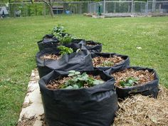 Make your own potato grow bags   DIY projects for everyone!