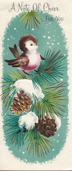 "Perched on pine-coned evergreens, a little birds sings ""a note of cheer for you...: ~ vintage Christmas greeting card - (vintage, snowy)   http://www.ebay.com/itm/Vintage-Greeting-Card-Christmas-Bird-Pine-Cones-I046-/390827568999?roken=cUgayN"