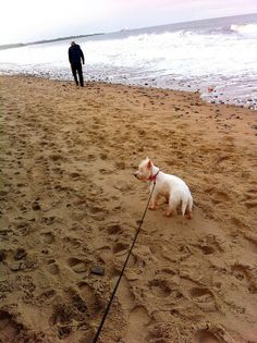Beach with my two favourites!